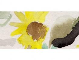 Sunflowers auf Papier